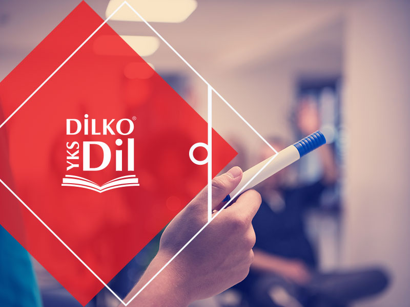 dilko-yks-v2